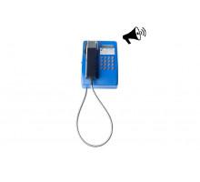 Промышленный антивандальный телефонный аппарат Ритм ТА201-МБ1РC/И