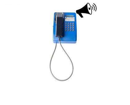 Антивандальный телефонный аппарат Ритм ТА201-МБРC/И